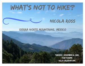 nicola-ros-mexico-talk-poster